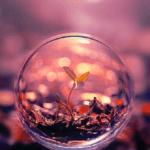 pink meditation ball